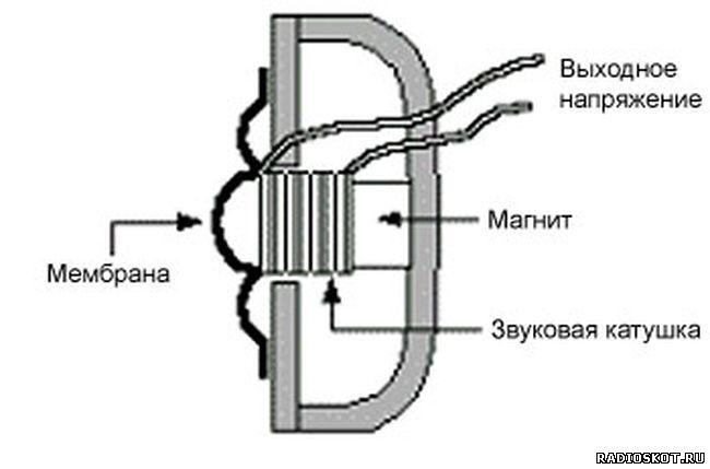 Рисунок устройство динамического микрофона