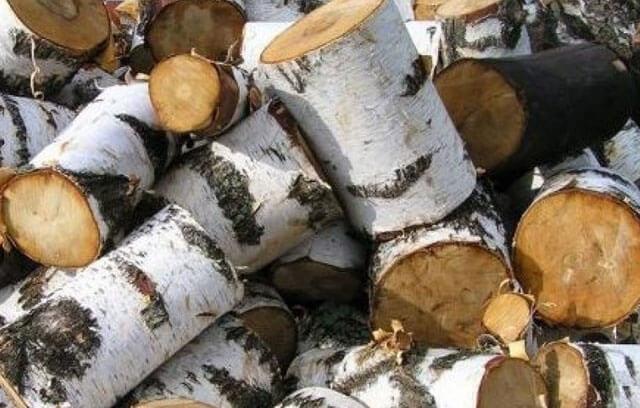 как правильно топить печь в бане дровами