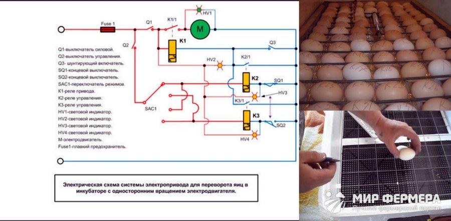 Автоматический поворот яиц в инкубаторе