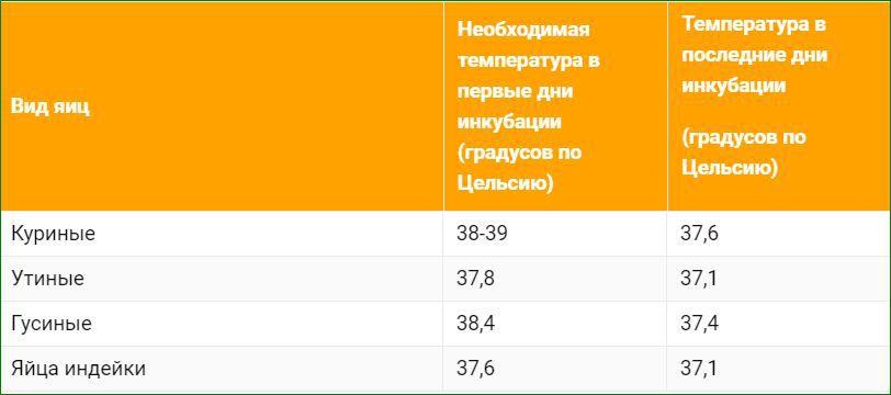 Таблица температурного режима в инкубаторе