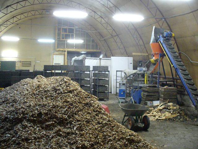 Производство деревобетона в домашних условиях привлекательно тем, что требует наличия материалов, которые можно приобрести по низкой цене