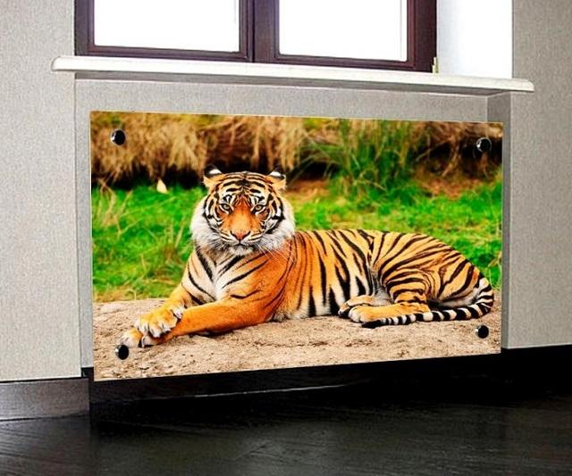 Стеклянный вариант экрана может стать декоративным элементом дизайна, способного визуально расширить помещение, внеся в него нотку определенной тематики.