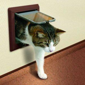 лаз для кошки в двери 2